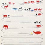 Vintage Infographic: How Long Do Animals Live?