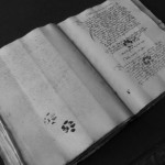 Paws, Pee and Mice: Cats & Medieval Manuscripts
